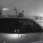 Caught on camera: Ford Explorer crashes through  a Flint Township business