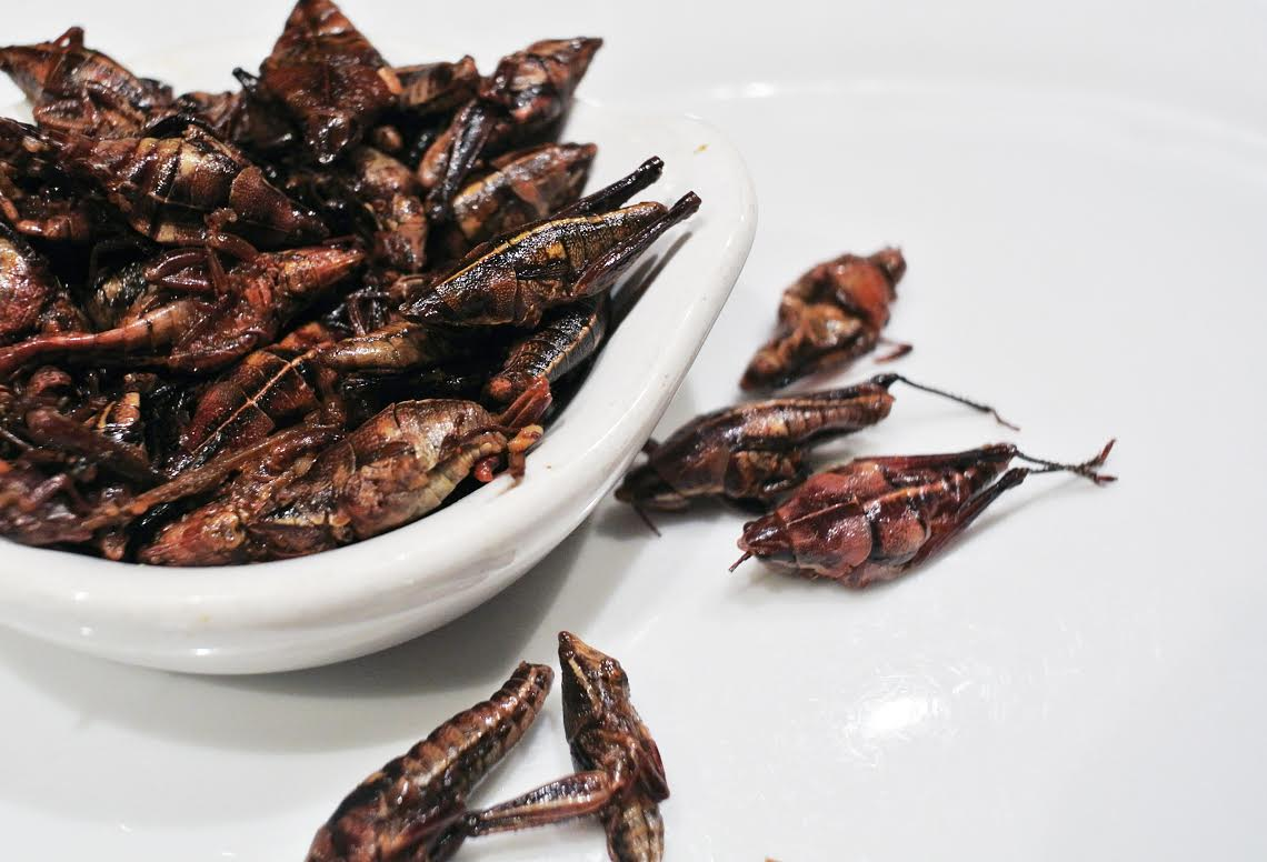 Grasshopper toasted in chili lime salt, chapulines are a relatively accessible way to ease into the world of bug eating. (Photo: Courtesy Poquitos)