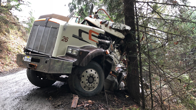 Driver injured when log truck crashes off mountain road