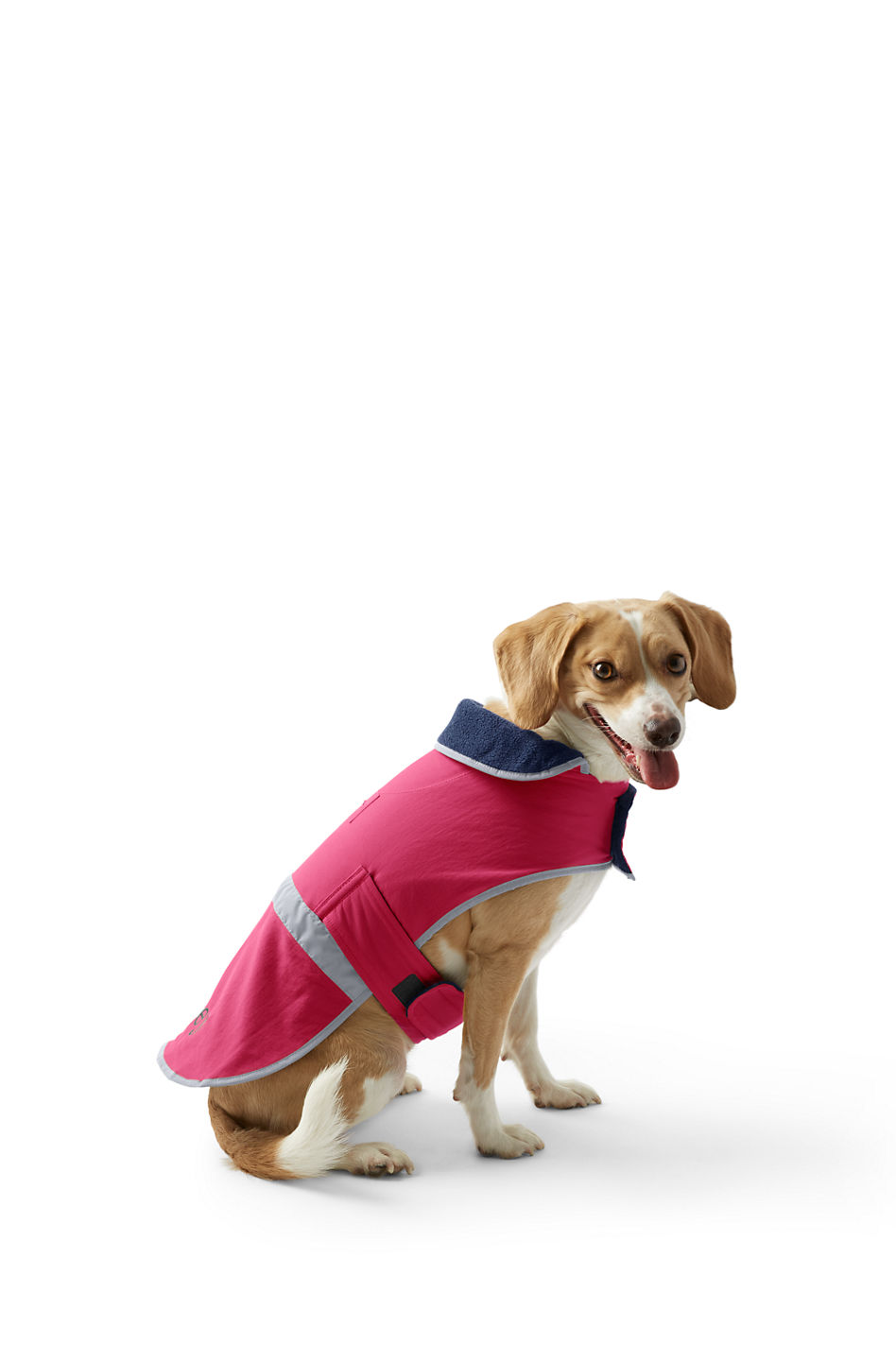 The Dog Squall Jacket from Land's End will keep Fido dry in Seattle's rainy weather. The ideal barrier to outside elements, this jacket is made of water-resistant nylon with a full lining of warm, anti-pilling and anti-static fleece to keep your dog warm and dry. The reflective strap and binding will keep you and your dog visible on evening walks. The adjustable hook and loop closures ensure a great fit. The jacket is machine washable.{&amp;nbsp;}Find out more at landsend.com. (Image: Land's End)<p></p>