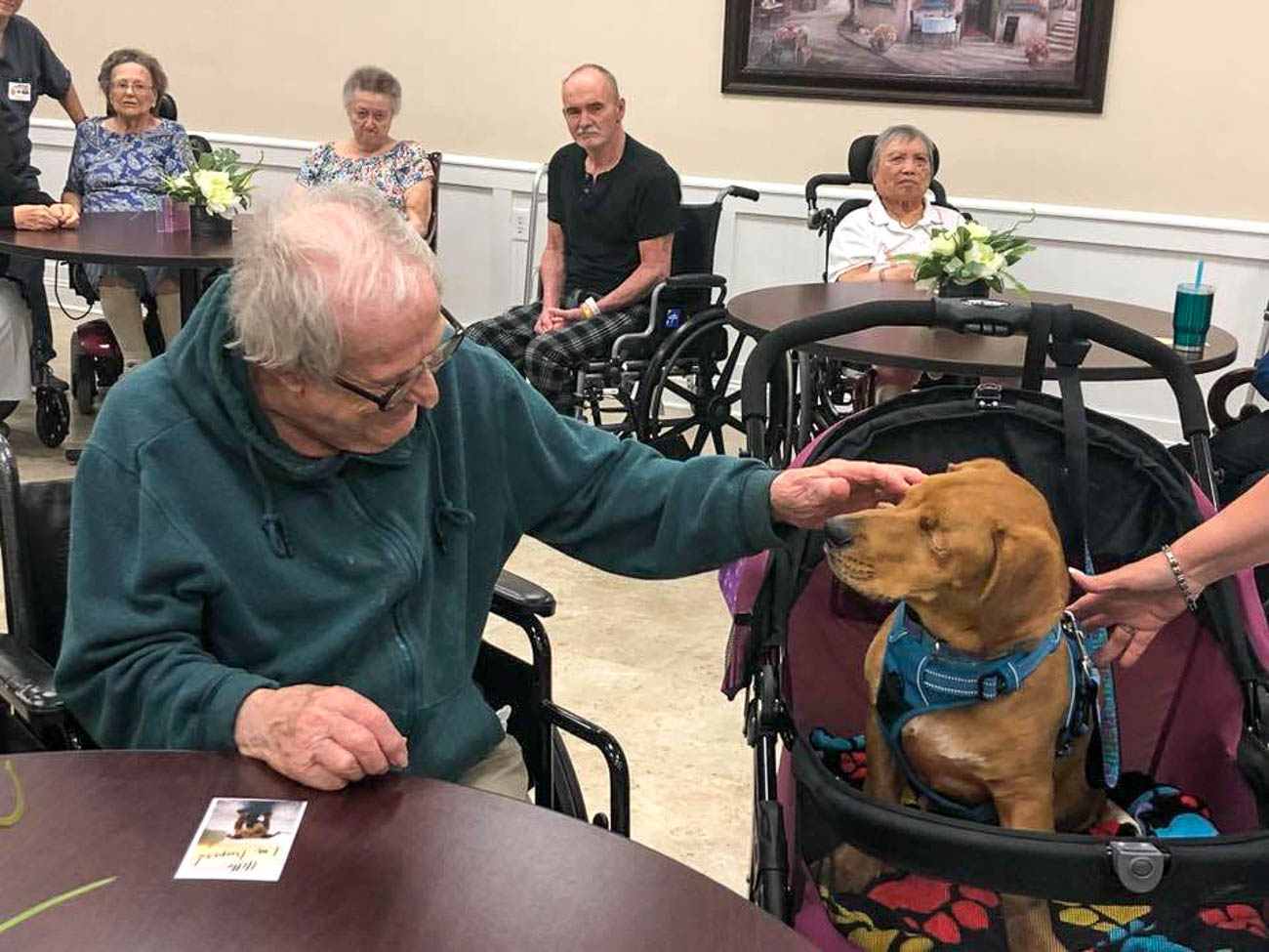 Trooper now spends his days around the Tri-State, meeting people and raising awareness for various causes. He brings smiles and joy wherever he goes. / Image courtesy of The Trooper Telegraph // Published: 9.8.19