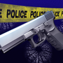 Burglary suspect shoots himself after being approached by police