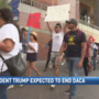 Local 'Dreamers' fear upcoming DACA announcement