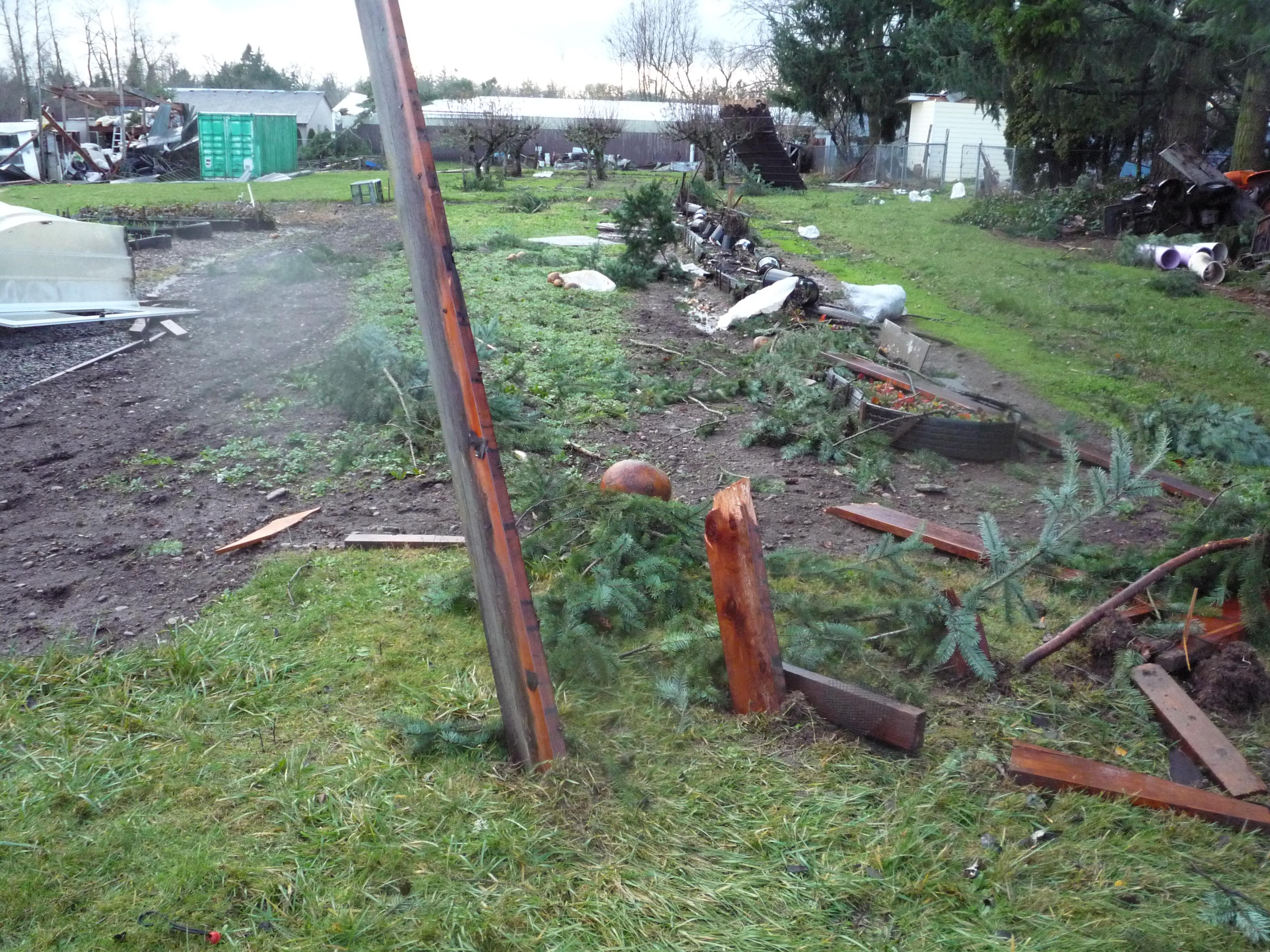 National Weather Service photo of December 14, 2010, tornado damage in Aumsville, Ore.