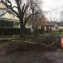Crews work to restore power to thousands as Portland metro continues to thaw