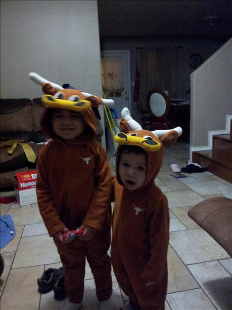 <a  href=&quot;http://share.valleycentral.com/Media/View/3051694&quot;>Lil' Longhorns</a>