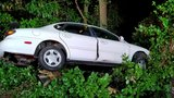 Police search for occupants who crashed vehicle into tree and fled scene