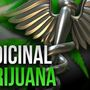 West Virginia medical board recommends smokable forms of pot for certain patients