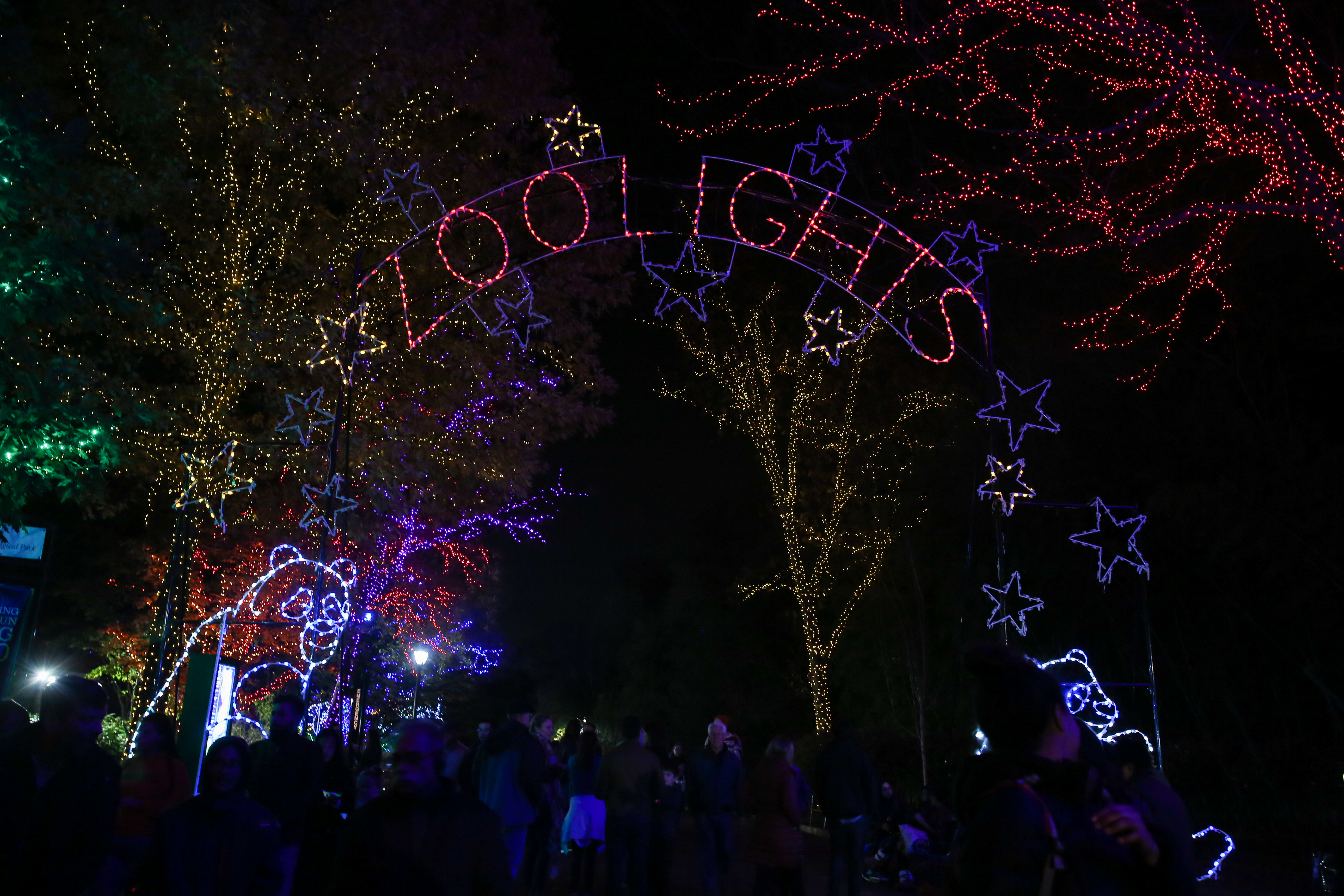 More than half a million LED lights are now blinking and twinkling at the Smithsonian's National Zoo. ZooLights, an annual holiday event,  allows visitors to experience the zoo after hours and experience snow-less tubing, kid-friendly train rides and pretty displays - all while sipping on hot chocolate. ZooLights will remain open until January 1. (Amanda Andrade-Rhoades/DC Refined)