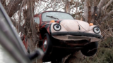 Utah woman puts car in tree, city says 'take it down'