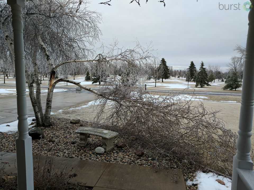 A tree branch is broken in Kaukauna Feb. 20, 2018, during Winter Storm Brooks. (Photo submitted by Tammy Welhouse)