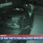 Baldwin County thieves go driveway shopping for guns