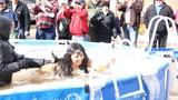 Twin Sault's Polar Plunge raises more than $15,000 for Special Olympics