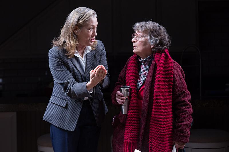 Meg Gibson and Sarah Marshall in Admissions at Studio Theatre. (Image: Teresa Wood)<p></p>