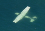 170731_komo_small_plane_crash_06_1280.jpg