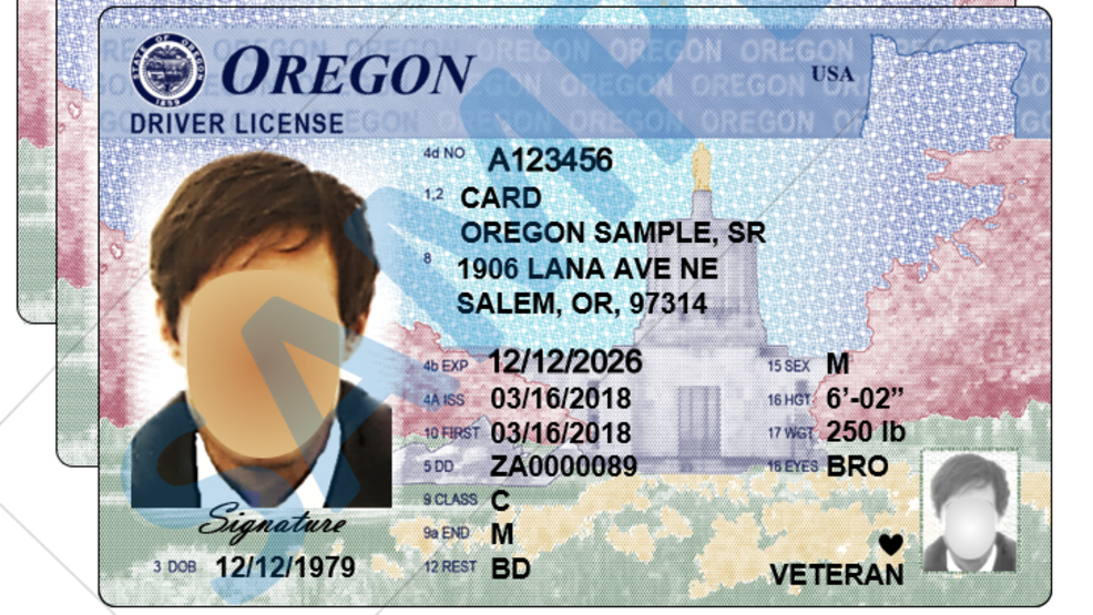 replacement oregon drivers license cost