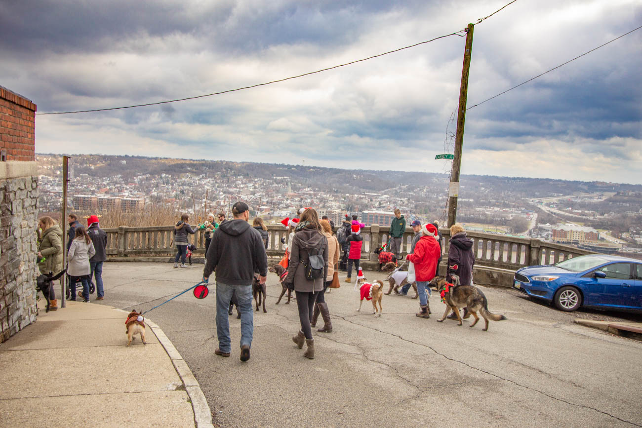 The Mt. Adams Business Guild put on the event that was sponsored by Pet Valu. All of the proceeds from raffle tickets and monetary donations went to the SPCA Cincinnati. / Image: Katie Robinson // Published: 12.15.19