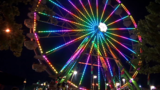 Share your videos and photos of the Lane County Fair