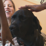 MARYLAND MOMENTS | Manny the dog helps comfort abused children