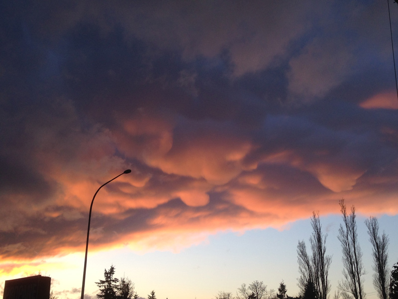 Mammatus clouds are a sign of turbulence and are frequently spotted on the edges of strong storms. These photos were taken at sunset on March 19, 2014 from Mukilteo and show the northern side of a Puget Sound Convergence Zone.