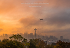 2018-10-19 Kerry Park thick fog sunrise TL-2613.jpg