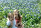 Sisters laughing in the sea of Bluebonnets.