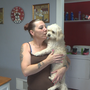 Missing peekapoo back home safe after woman tries to sell dog on Facebook