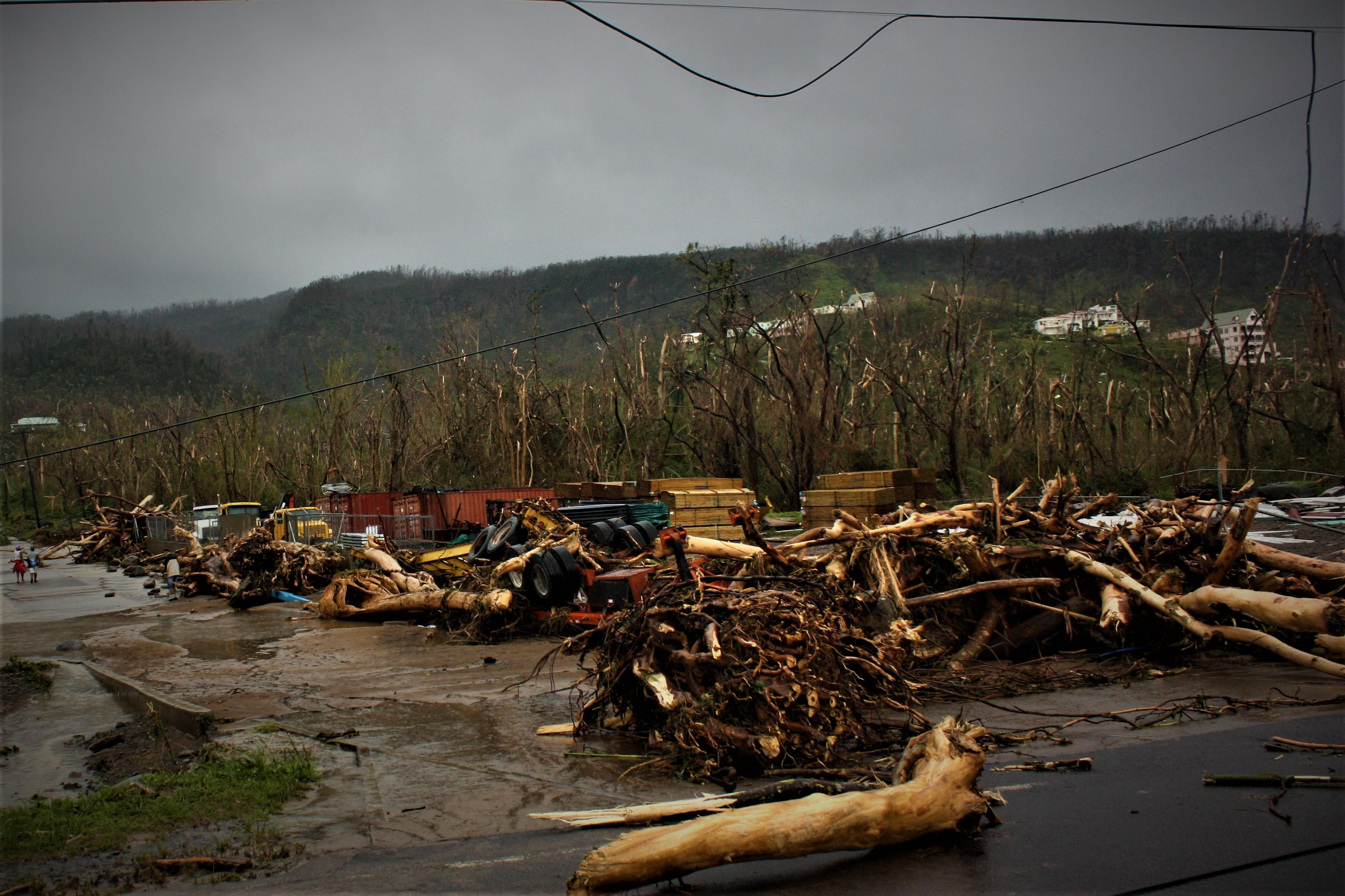 Photos show the destruction n Dominica caused by Hurricane Maria. (Courtesy of Elisha Griffin)