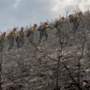 Firefighters shift focus to south side of Dollar Ridge as it threatens public land