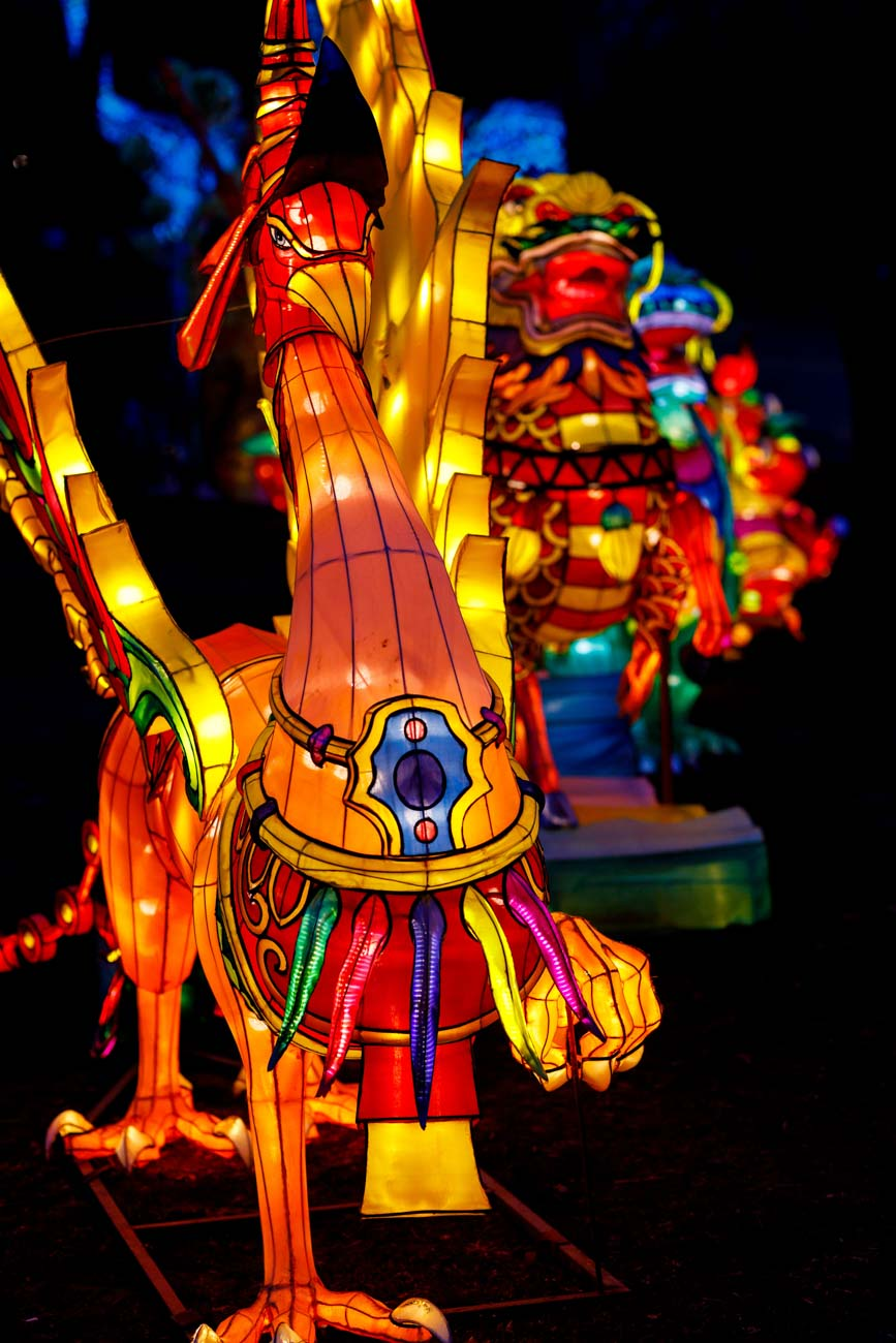 The Wild Lights Asian Lantern Festival is one of the biggest Chinese lantern festivals in the country, featuring 2,000 intricate lanterns made of 60,000 square feet of silk, 50,000 LED lights, and 65 larger-than-life scenes. From shimmering safari species to Chinese mythological creatures, there's a lot to take in along the 1.4-mile, wheelchair and stroller-friendly trail. It runs through August 30th, and tickets must be purchased online in advance. ADDRESS: 1100 Trevilian Way (Louisville) / Image: @bobbiphoto via the Louisville Zoo // Published: 8.10.20