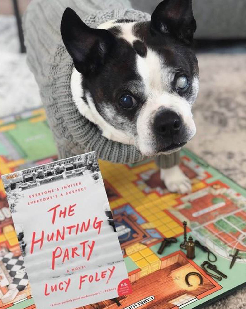 Participating in a stimulating book club / Image courtesy of Instagram user @charliechuckles_thedog // Published: 4.1.20