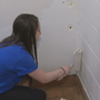 St. John Fisher students beautify Rochester schools