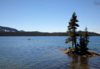 waldo lake2.PNG