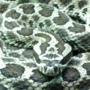 Man bit by venomous rattlesnake in Michigan