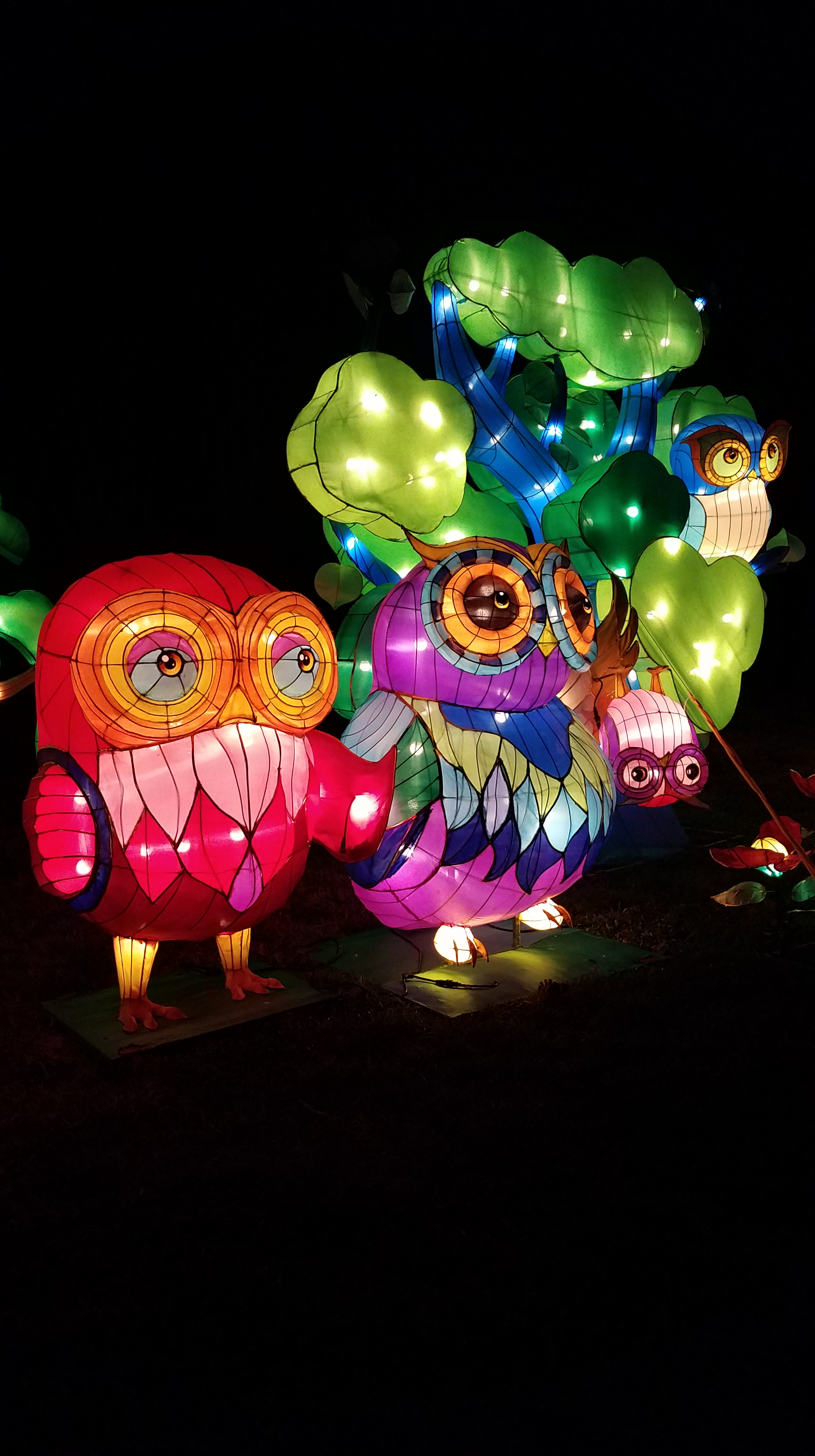On display through May 13, Norfolk Botanical Garden's{ }LanternAsia exhibition consists of more than 40 colossal lanterns including a 200 foot long colorful dragon and a four-story pagoda{ }made from a million pieces of porcelain. (Image: Troy Petenbrink)