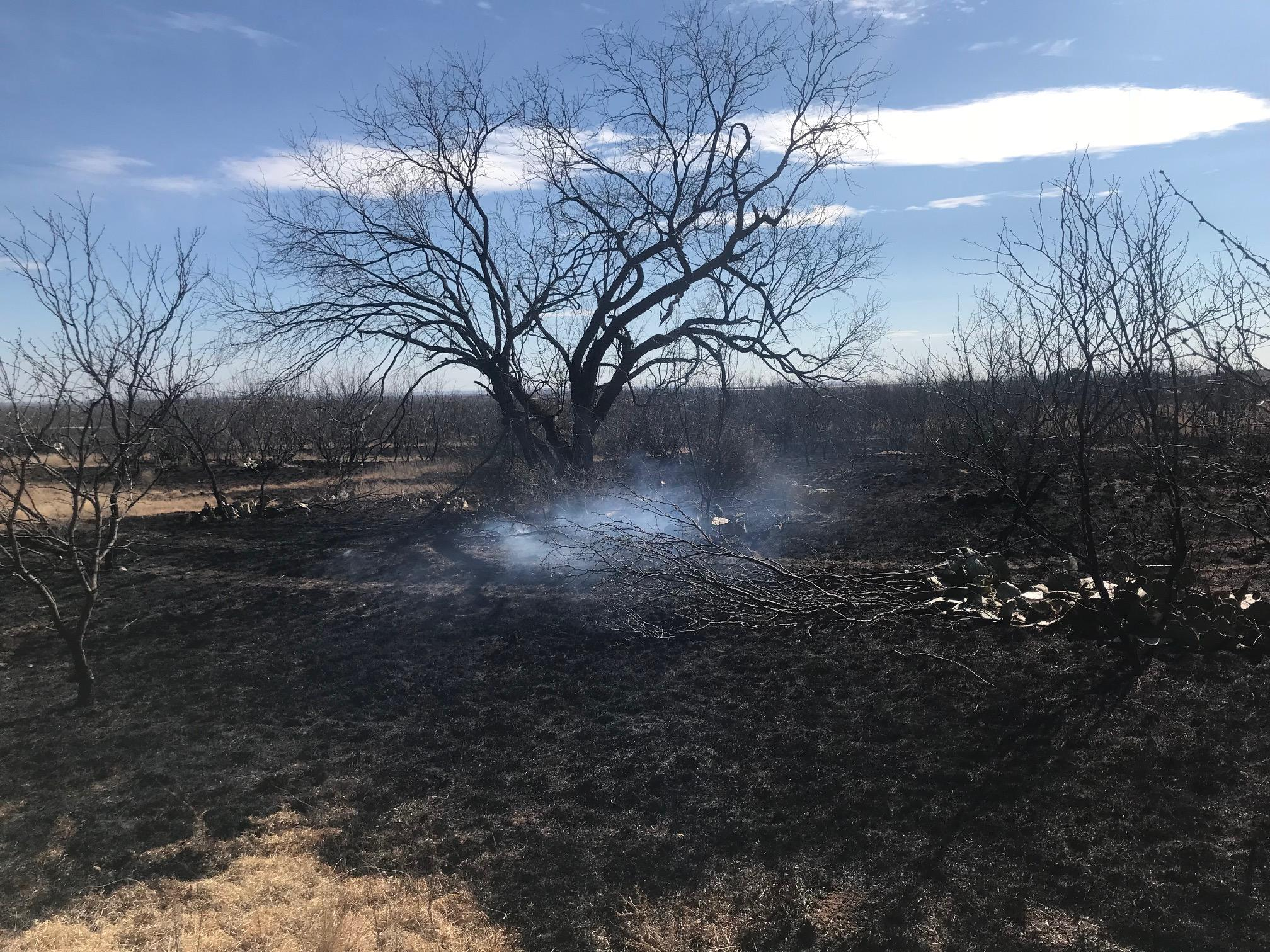 Multiple agencies responded to a two- to three-acre wildfire in Jones County -- just east of the Abilene landfill. The fire burned numerous old vehicles on Private Road 343 and threatened dozens of homes. Photos by Nick Bradshaw/KTXS News