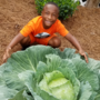 Milledgeville boy enters 4-foot cabbage in contest for $1K scholarship