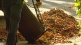 Your last chance to register for final leaf pickup pass in St. Joseph County