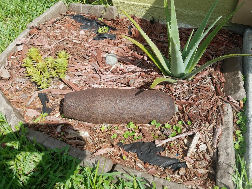 Old military ordnance prompts bomb scare in Port St. Lucie. (WPEC)