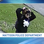Mattoon police need help identifying a person of interest