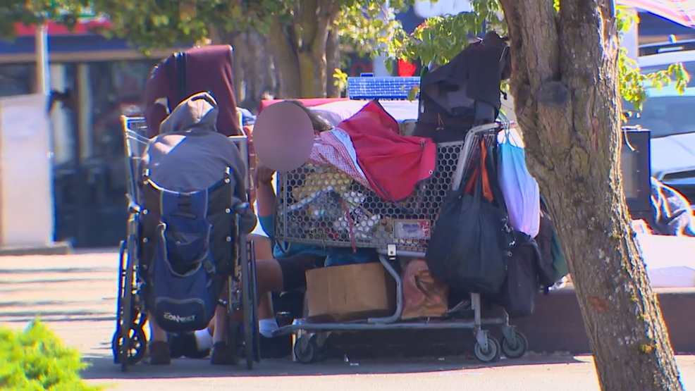 Seattle business owners fed up with homeless woman pooping ...